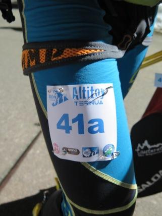 altitoy 2015 fotos (3)