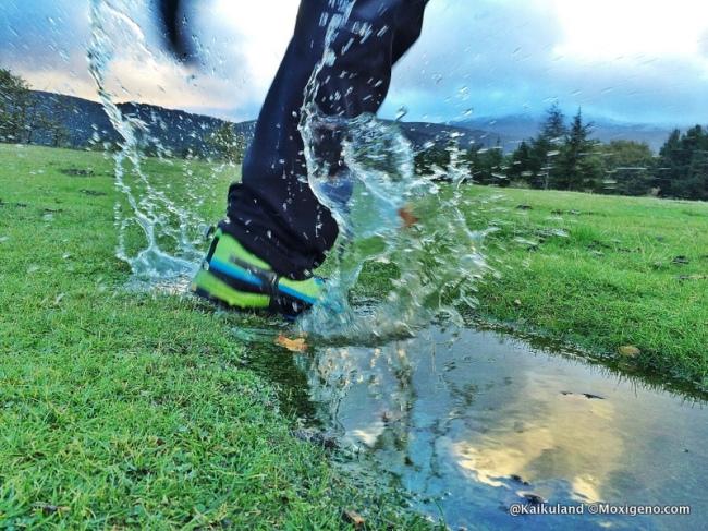 zapatillas montaña salewa firte trail gtx (1)