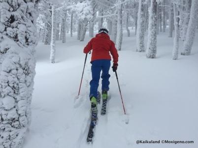 04-dynafit esqui de montaña seven summits (6)
