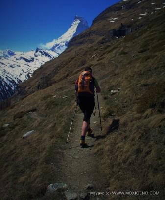 cervino matterhorn alpes suizos zermatt fotos mayayo (212)