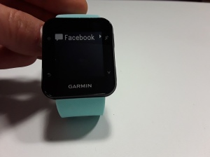 garminforerunner35-6