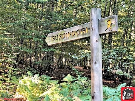 eremua trail y btt pirineonavarro eugi (62)